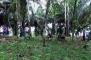 MinEducación renovó acreditación de alta calidad al programa de Biología de la UniAmazonia