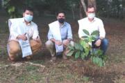 Caquetá tiene 139 mil hectáreas de tierra con alta oferta de servicios ecosistémicos: ViceMinAmbiente